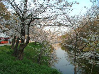 Ueda4_2