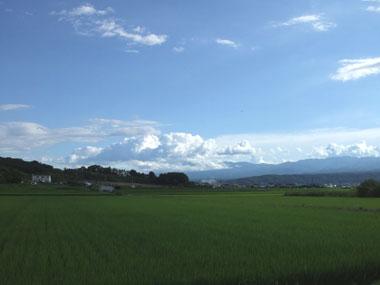 Photo1_1